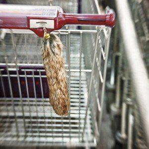 Fuchsschwanz mit Einkaufswagenchip