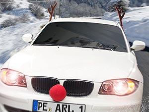 Rentier-Verkleidung für Ihr Auto